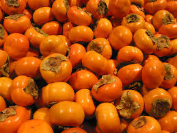 American Persimmon Click Picture for More pricing and Size Options