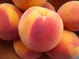 Elberta Peach 4 Ft will make fruit this spring! WOW! Click Picture for More pricing and Size Options