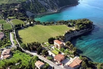 Clos St. Magdeleine Cassis Blanc 2017 - Cassis, France