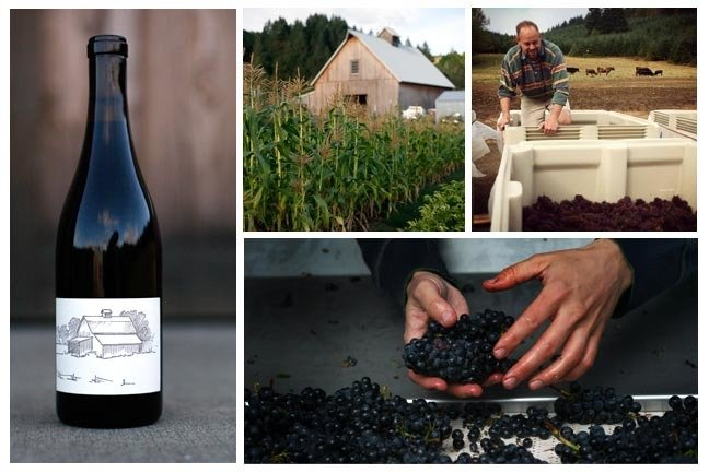 2016  Big Table Farm Yamhill-Carlton Pinot Noir - Willamette Valley, Oregon