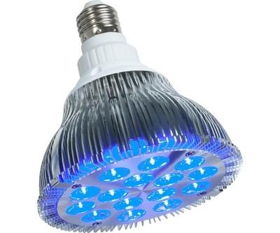 powerPAR LED Bulb - Blue 15W/E27