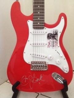 Chitarra PINK Autografato Signed Autografato Signed Guitar PINK Chitarra COA certificate Signed Chitarra Signed Cantanti Singer Star