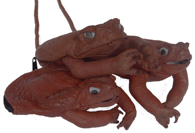 CANE TOAD NECK PURSE WITH LEGS