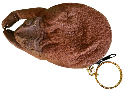 CANE TOAD KEY PURSE WITH LEGS