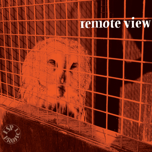 ESP Project - Remote View CD