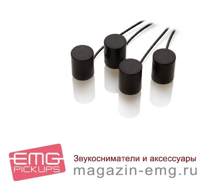 EMG 4SW