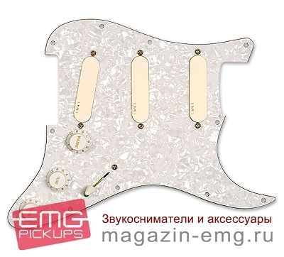EMG DG20 Девид Гилмор