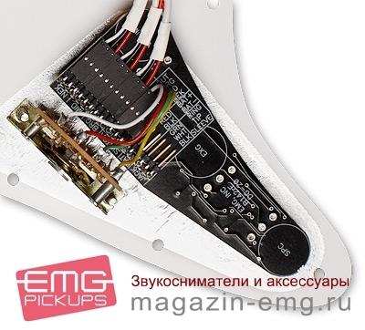 EMG DG20 Девид Гилмор, панель