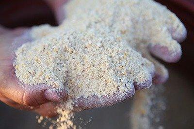 Non-GMO Chick Starter/Broiler Feed