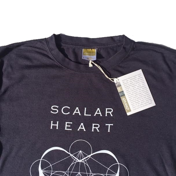 Men Organic Bamboo & Cotton T-shirt: Scalar Heart Connection