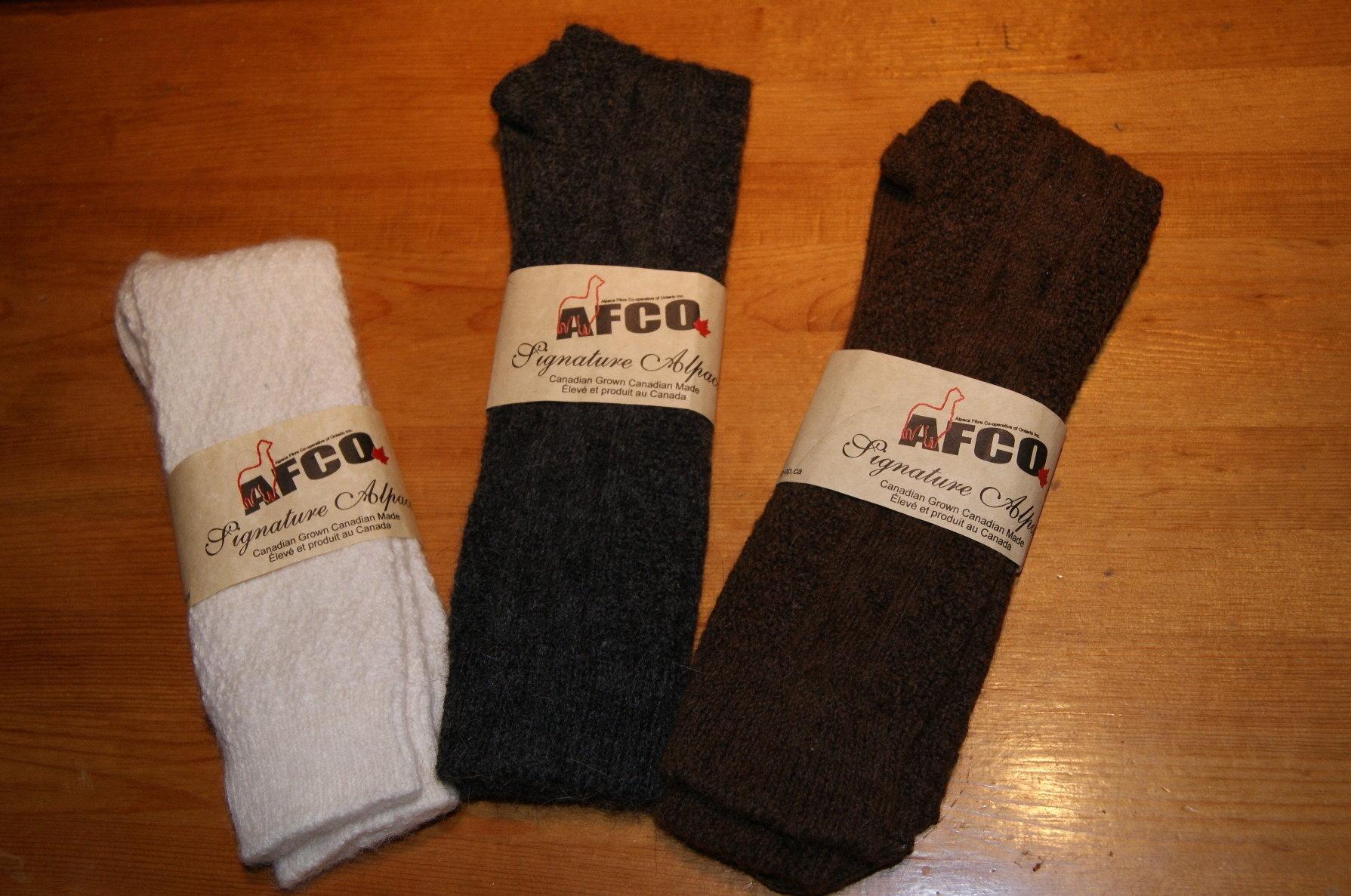Dress Socks DS
