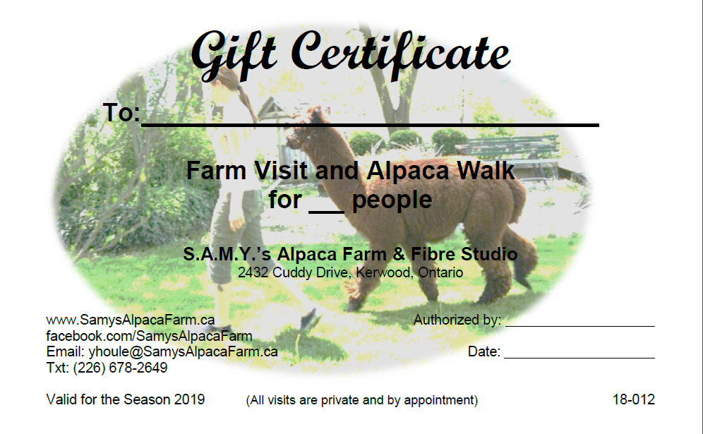 Gift Certificate Walk and Talk