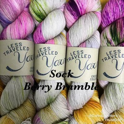 Less Traveled Yarn Fingering Sock Barry Bramble
