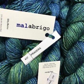 Malabrigo Silky Merino Pradera #SM437