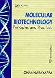 Molecular Biotechnology by Channarayappa