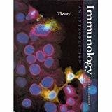 Immunology An Introduction by Ian Tizard