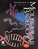 Introduction to Molecular Biology by Peter Paolella