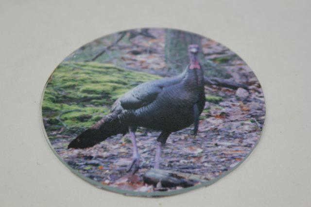 Turkey Call Glass with Picture of a Gobbler 3.5""