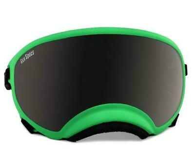 Large Rex Specs Dog Goggle (Echo Green Frame)