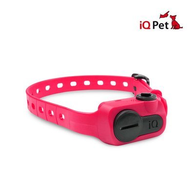 Dogtra iQ No Bark (Pink)