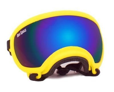 X-Small Rex Specs Dog Goggle (Yellow Frame)