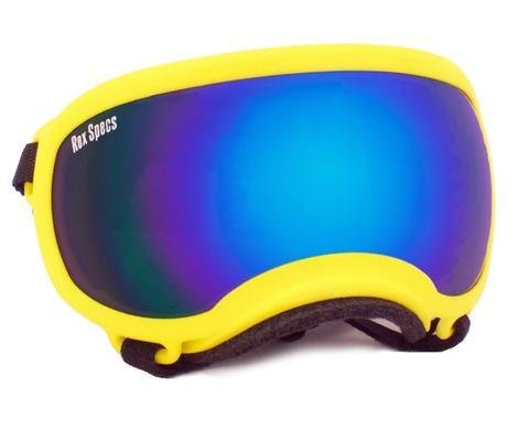 Small Rex Specs Dog Goggle (Yellow Frame)