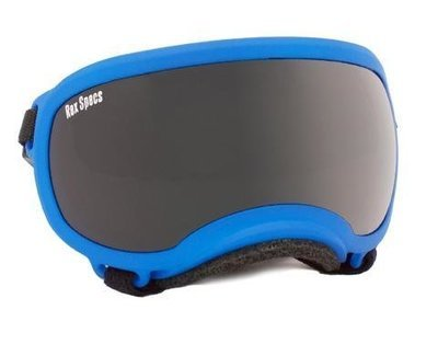 Small Rex Specs Dog Goggle (Apollo Blue Frame)
