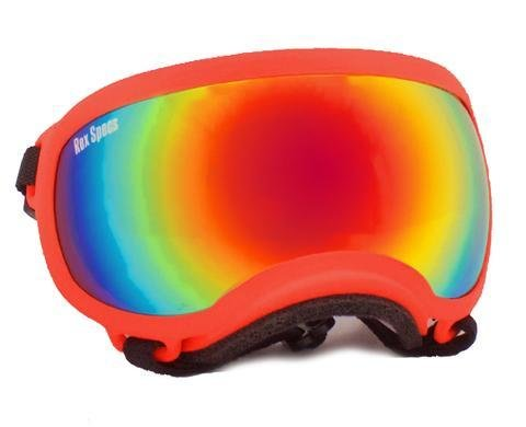 Small Rex Specs Dog Goggle (Orange Frame)