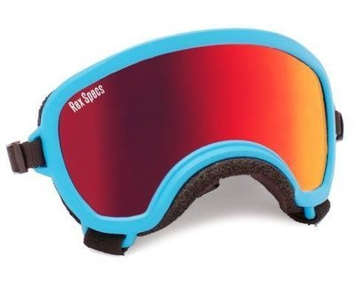 Small WIDE Rex Specs Dog Goggle (Blue Frame)