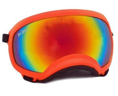 Medium Rex Specs Dog Goggle (Orange Frame)