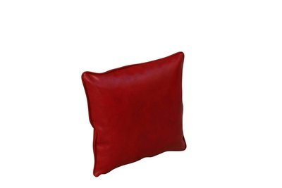 Pillow-Red Snakeskin