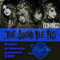 THE SOUND BEE HD EN CONCIERTO (M&G DOMINGO)