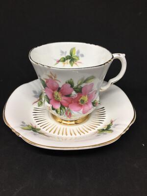 Royal Adderley 'Prairie Rose' Tea Cup