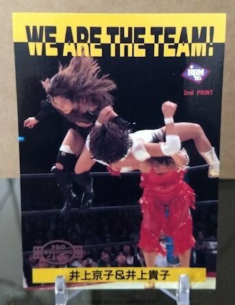 Double Inoue Tag Team 1995 BBM Wrestling Base Card