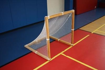 Lacsal Goal