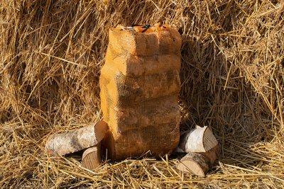 Net of Kiln Dried Hardwood Logs 22l