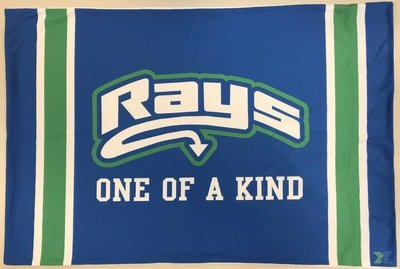 Rays Pillow Case