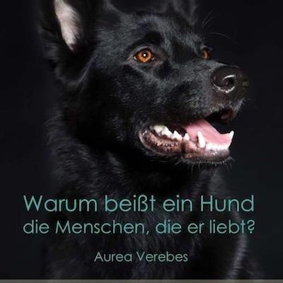 Seminartag: Warum beißt ein Hund die Menschen, die er liebt? 00155