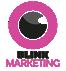 Blink Print