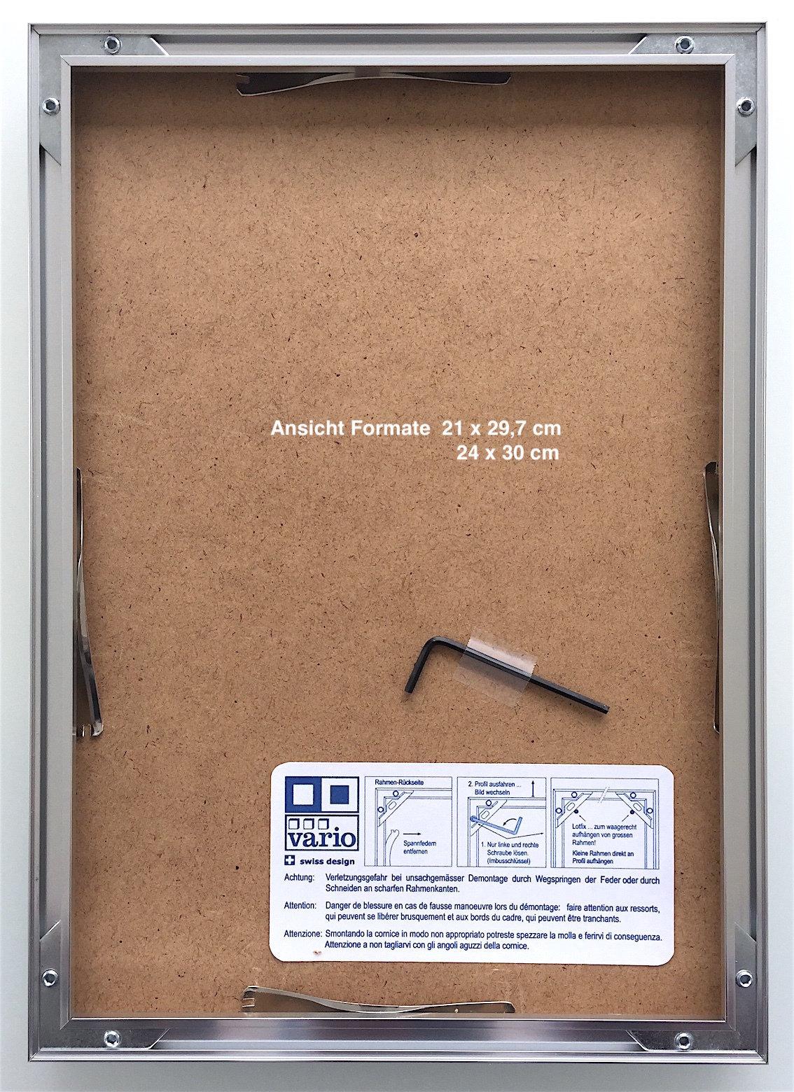 C360 Aluminium Rahmen \
