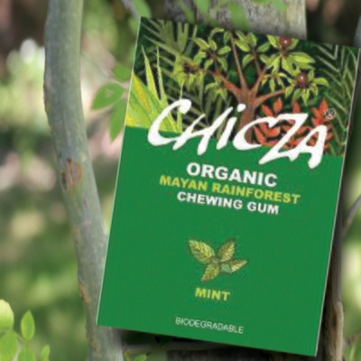 Chicza Organic Rainforest Chewing Gum - Mint