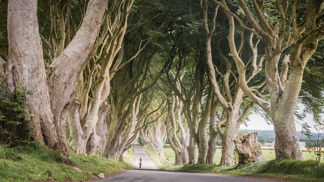 Dublin - The Game of Thrones Day Tour - $120.00 09268