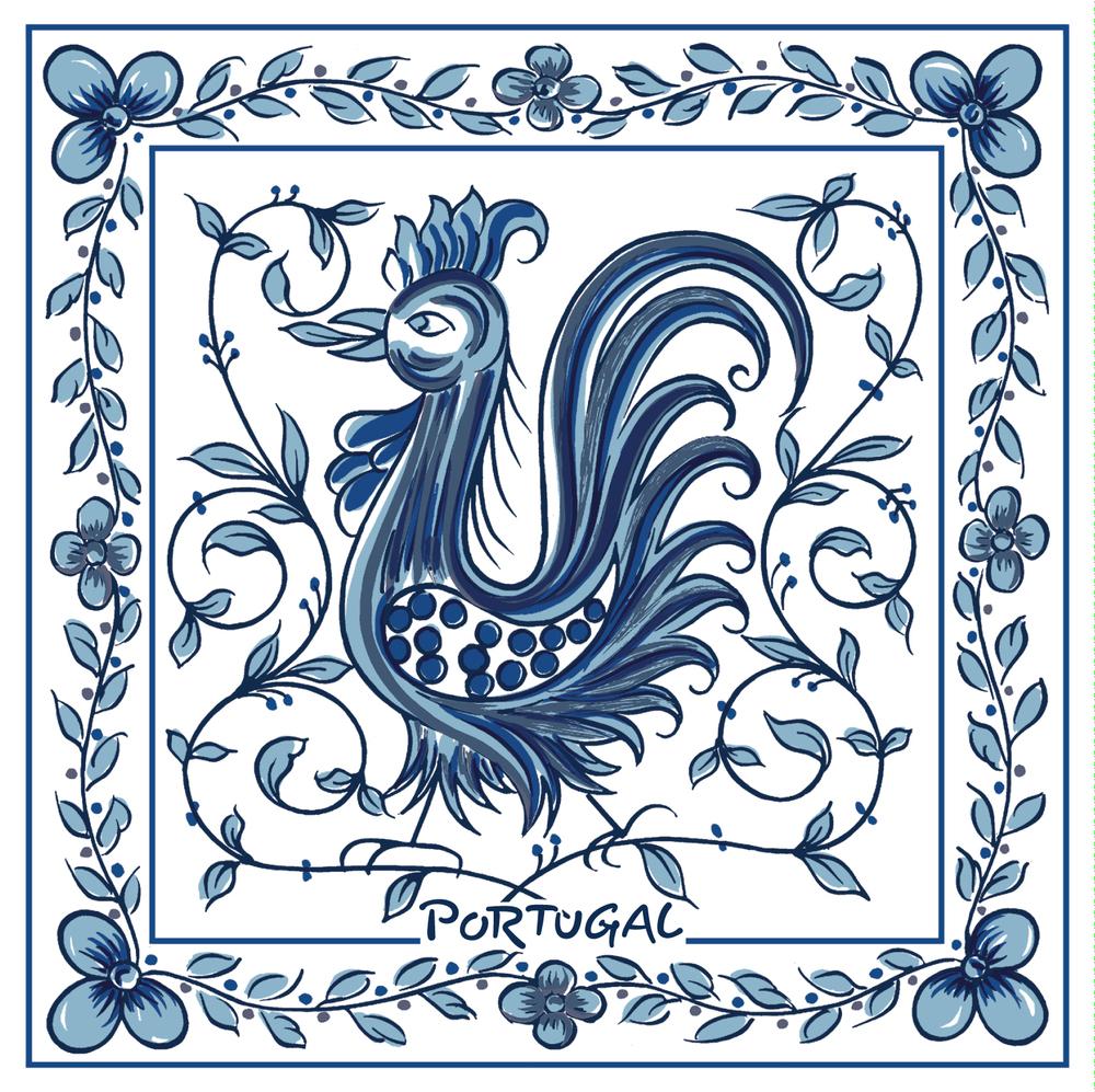 Galo Águeda Azul 11x11