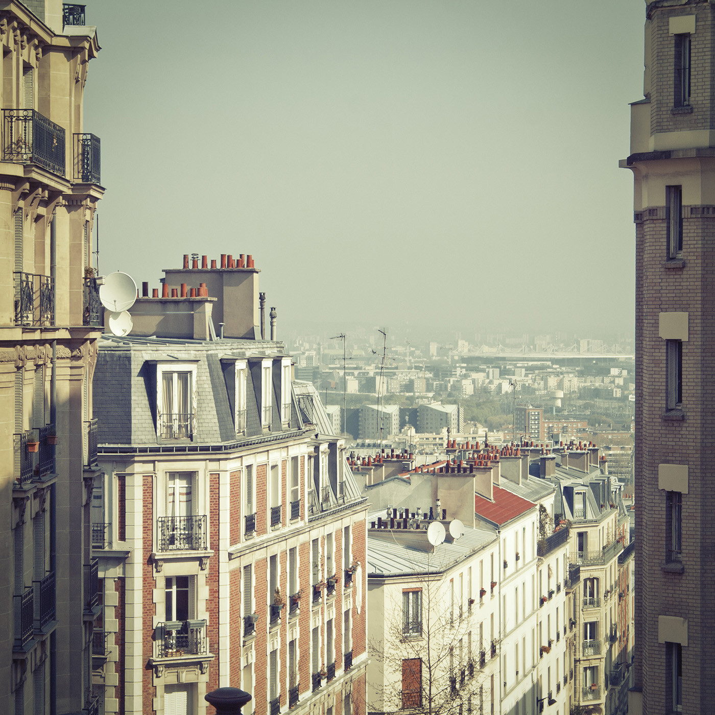 "Slim Aarons ""Paris Rooftops"" Wall Art | Jonathan Adler"