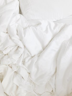 Silk Winter Comforter