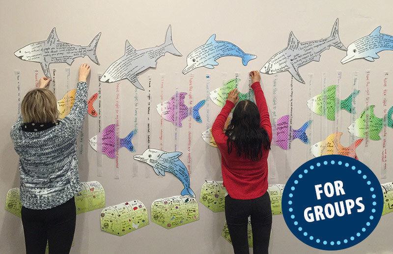 The Shark Cage Mural Kit SC-MuralKit-Group