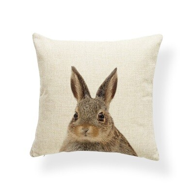 Cushion Cover 17