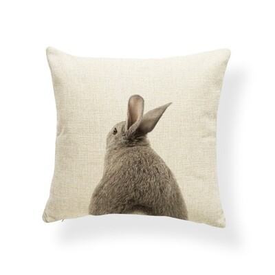Cushion Cover 18