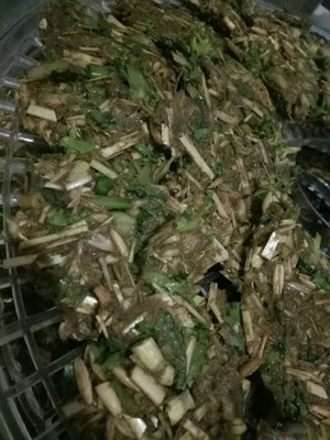 Kale/ coriander and Banana crispies