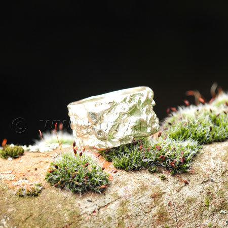 Ring in massief zilver met 2 briljantjes zirkonium - Ralf De Burchgrave (België) - Maat57